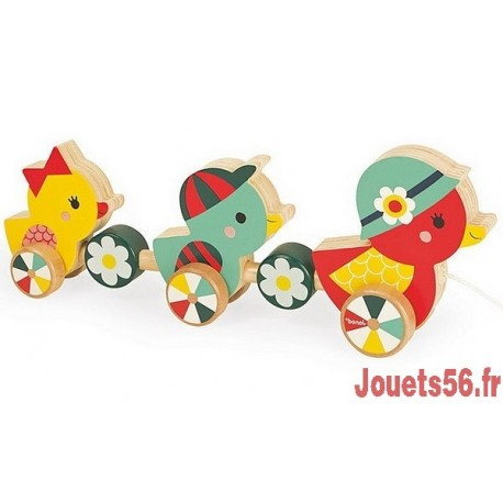 CANARDS A PROMENER BABY FOREST-jouets-sajou-56