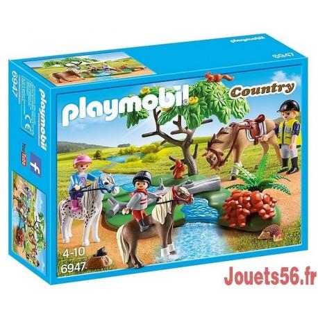 6947 CAVALIERS AVEC PONEYS ET CHEVAL-jouets-sajou-56