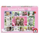 PUZZLE CHATONS 100PCES