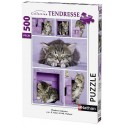 PUZZLE CHATONS MIGNONS 500 PCES