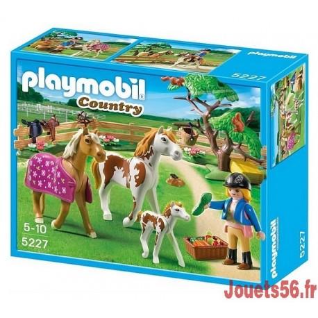 5227 Chevaux et enclos-jouets-sajou-56